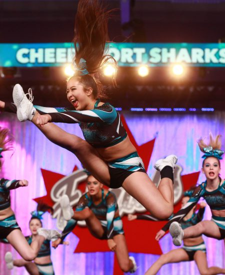 Cheersport-sharks-resource-case-study